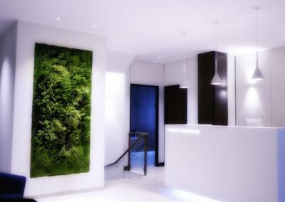 Cadres et murs végétaux 1
