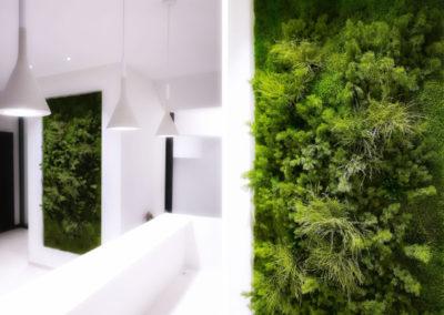 Cadres et murs végétaux 3