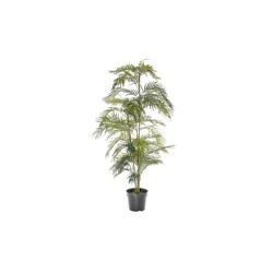 Areca palmier H 150 cm