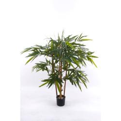 Bambou japonica 120 cm
