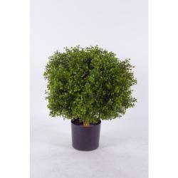 Buxus vert Ø45 x 55 cm