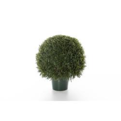 Cupressus boule Ø40 x 60 cm
