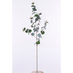 Eucalyptus branche 85 cm