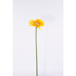 Gerbera jaune 50 cm