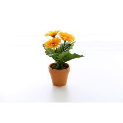 Gerbera jaune dans un pot d'argile 25 cm