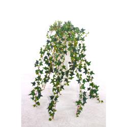 Hedera vert sans pot L 80 cm
