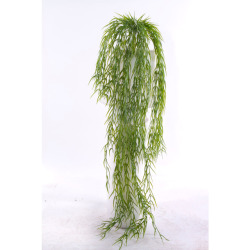 Hoya vert L 97 cm