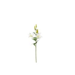 Lilium blanc 85 cm