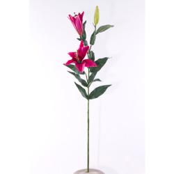 Lilium rose 80 cm