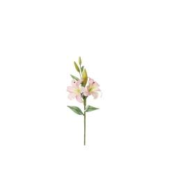 Lilium rose clair 85 cm
