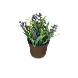 Mini-Blume blau