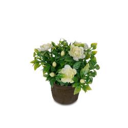 Mini-Blume weiss