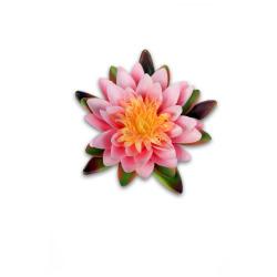 Nénuphar rose flottant 12.5 cm