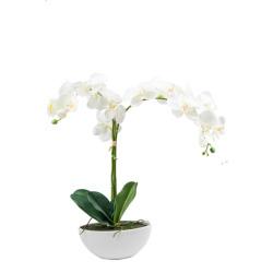 Orchidée blanche bol en céramique oval H 65 cm