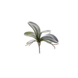 Orchideenblätter mit Pin grün L 28 cm