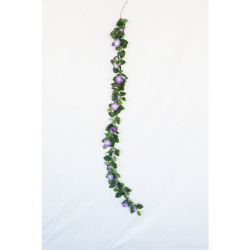 Pétunia Guirlande violette-blanche 180 cm