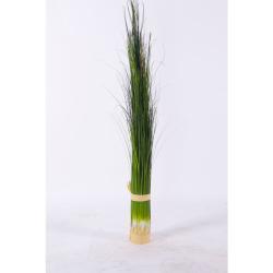 Pennisetum vert foncé L 122 cm