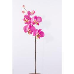 Phalaenopsis branche petite rose 60 cm