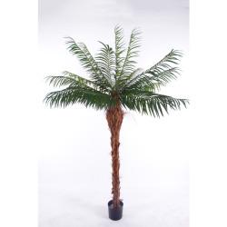 Phoenix tronc H 180 cm