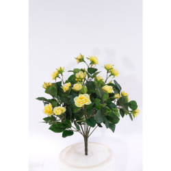Rosa Mini jaune sans pot 35 cm
