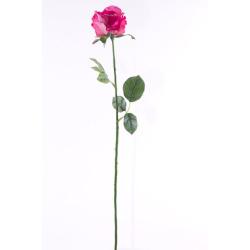 Rosa rose 65 cm