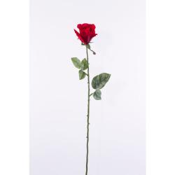 Rosa rouge 65 cm
