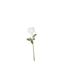 Rose double blanche 69 cm