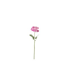 Rose double rose 69 cm