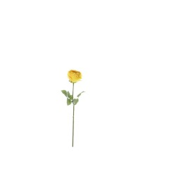 Rose large double jaune 69 cm