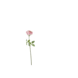 Rose large double rose clair 69 cm
