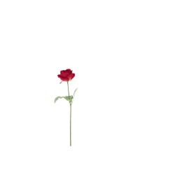 Rose large double rouge 69 cm