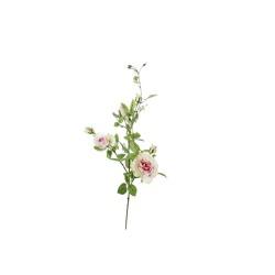 Rose ramifiée vert-rosé 101 cm